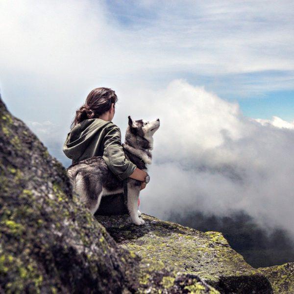 Blog: Frau mit Husky