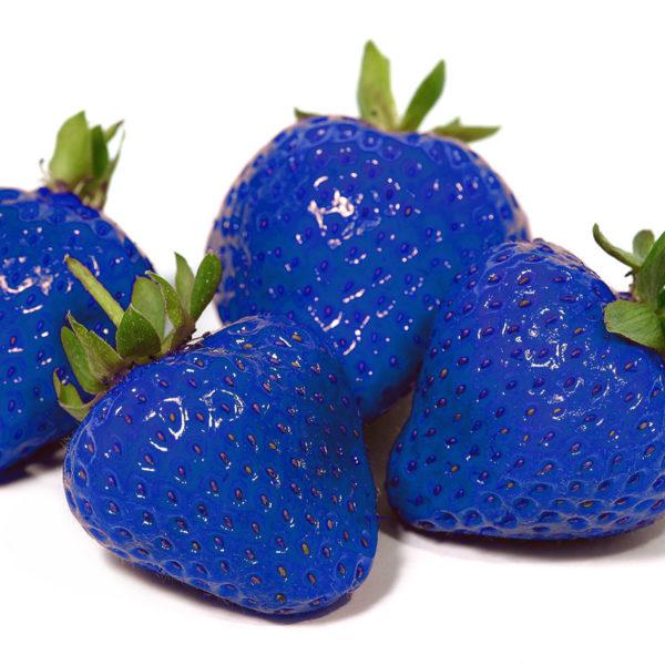 Blaue Erdbeeren